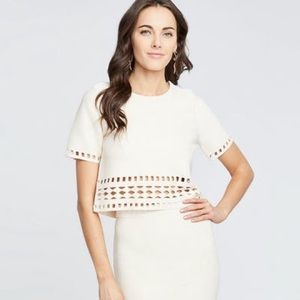 NWT Rachel Roy cutout crop top